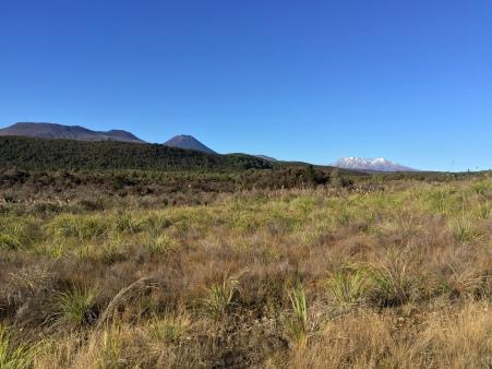 Ngauruhoe and Ruapehu together