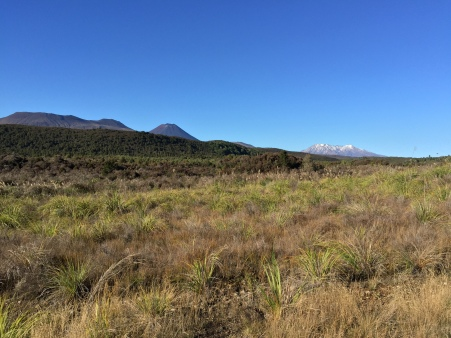 Ngauruhoe and Ruapehu together