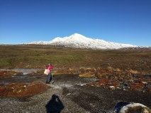 Manu and Ruapehu