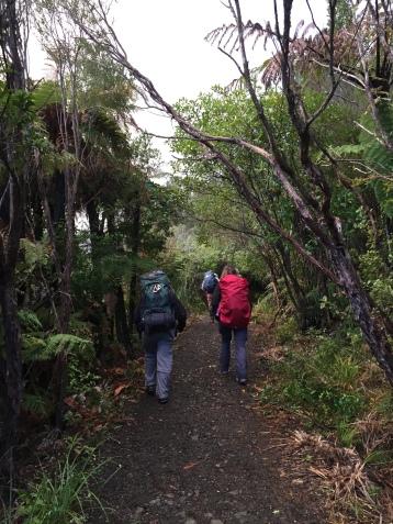 Paths to walk...