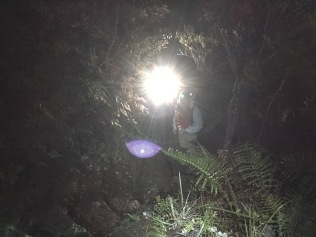 Head lamps are useful
