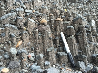 Weird sedimentary structures that look kind of like columnar basalts, but are made of sand and just the size of a sharpie