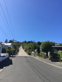 "The ""world's steepest street"". Good job Dunedin?"