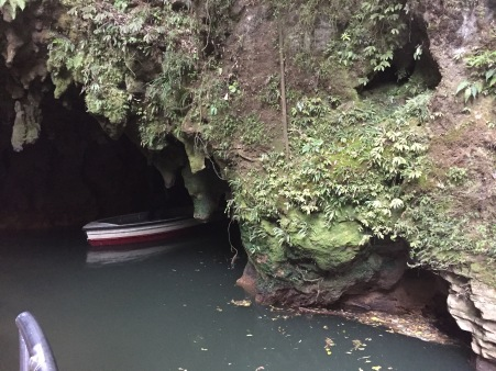 The only picture from Waitomo Caves.