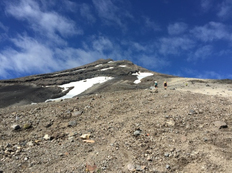I think scree is probably named for the sound you want to yell while trying to climb up it. Screeeeee!