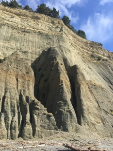 Cool erosional structures on the cliffs.