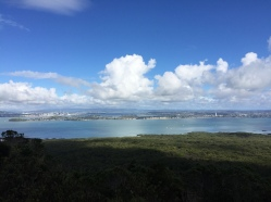 Pretty nice view from the top of Rangitoto