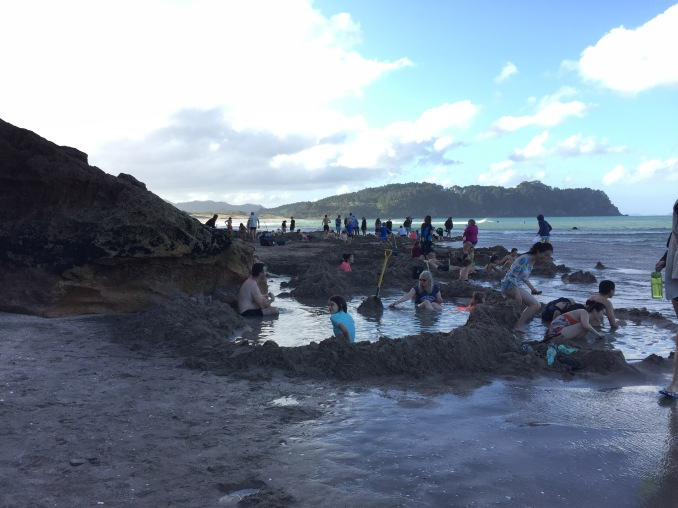 Hot Water Beach--a geothermal area where you can dig your own hot pool in the sand!