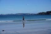 Aurelia fully enjoying the amazing beach