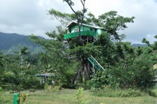 The amazing treehouse! We didn't stay here, but we were allowed to come out here to hang out and watch the volcano at night.