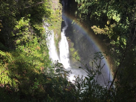 A waterfall with a rainbow right to the bottom!