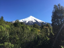 Volcán Osorno. It's such a perfect cone because none of the recent eruptions have come out of the top, rather always out of a side vent.